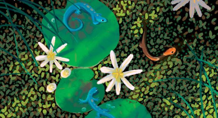 Disney Newt Concept Art.jpg