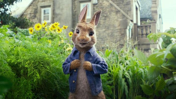 peter-rabbit-food-allergy.jpg