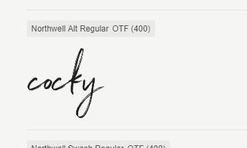 Northwell alt Regular font.png