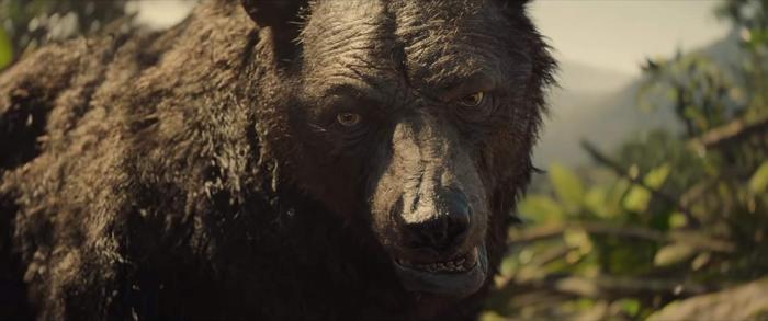 Baloo-Mowgli-2018.jpg