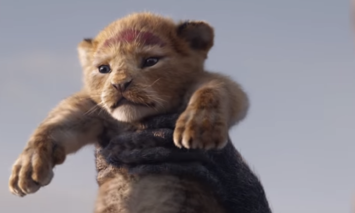 lion-king-live-action.png