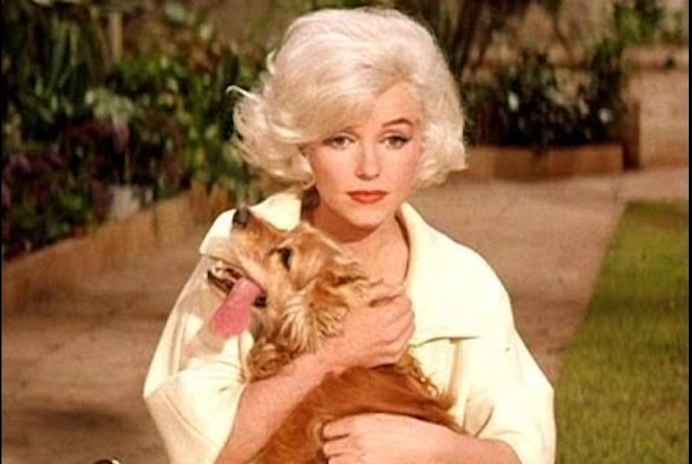 Marilyn_Monroe_dog.png