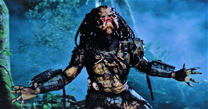 misunderstood-predator.jpg