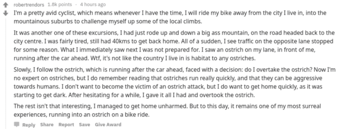 ostrich_bike.png