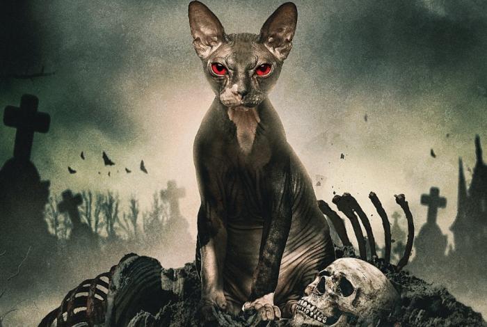 Pet-Graveyard-movie-2019.jpg