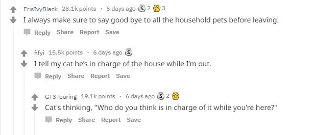 reddit-childhood-ritual-3.png