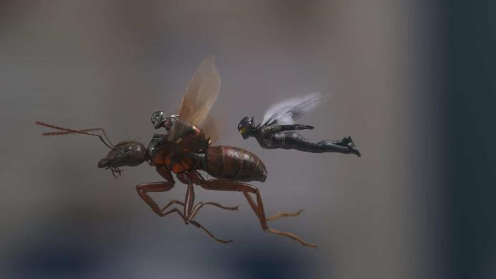 ant-man_the_wasp_americas_ass.jpg