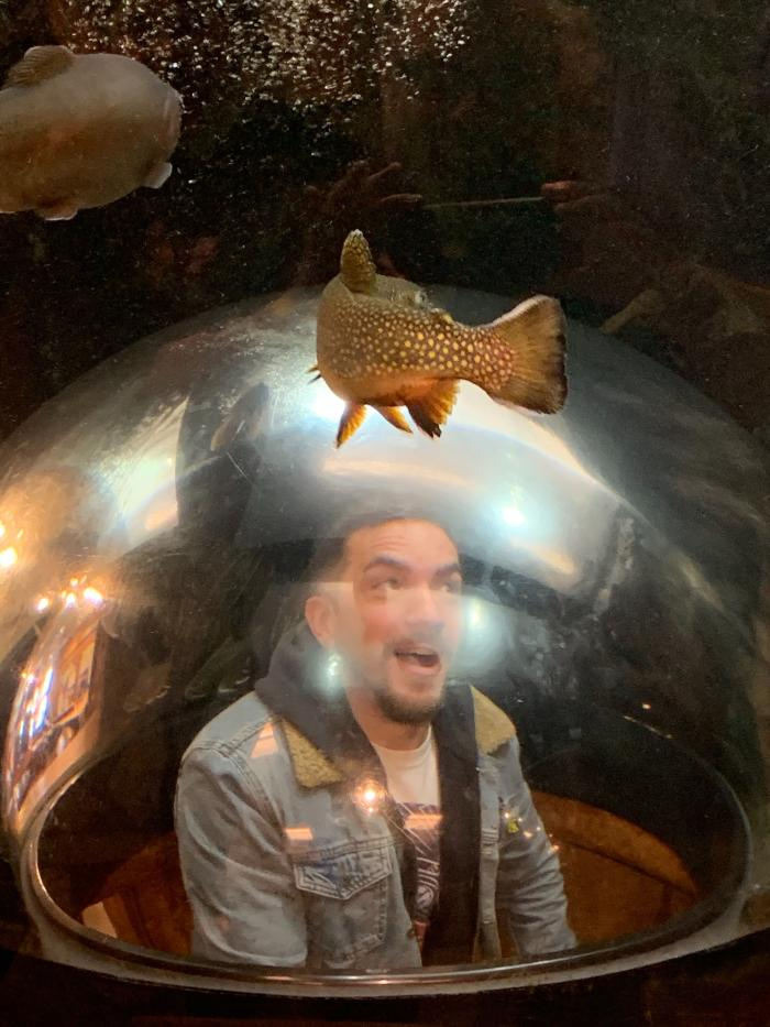 most-important-photos-fish.jpg