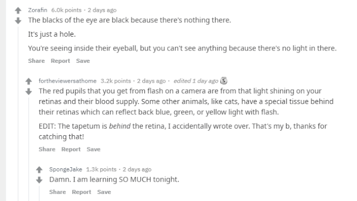 reddit-two-and-two-eyeblack.png