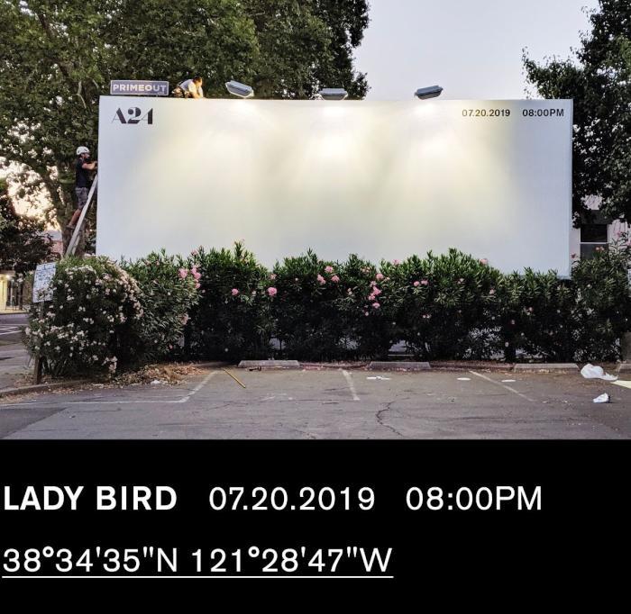 LadyBird-PublicAccess.jpg