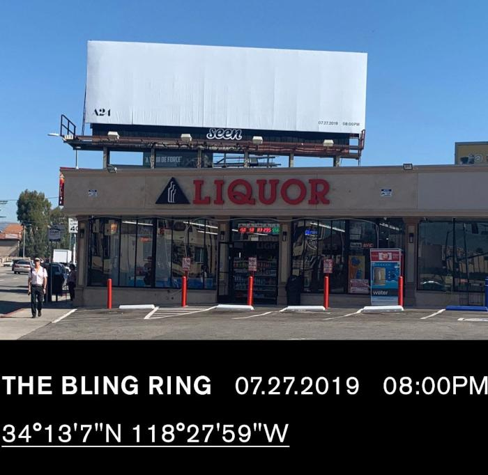 The Bling Ring Public Access.jpg