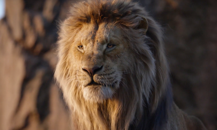 the lion king.png