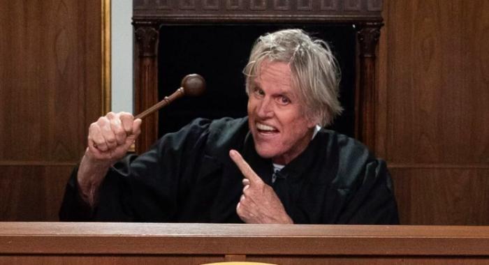 Gary-Busey-Pet-Judge.png