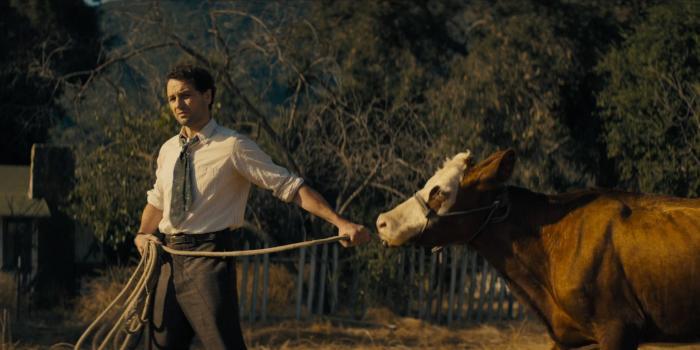 HBO-Perry-Mason-Podjiba.jpg