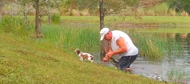 Florida Man Puppy Gator.png