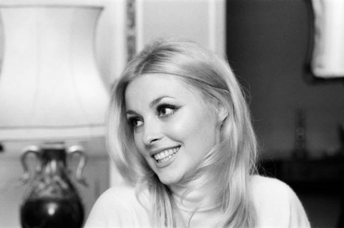 sharon Tate Getty Images 2.jpg