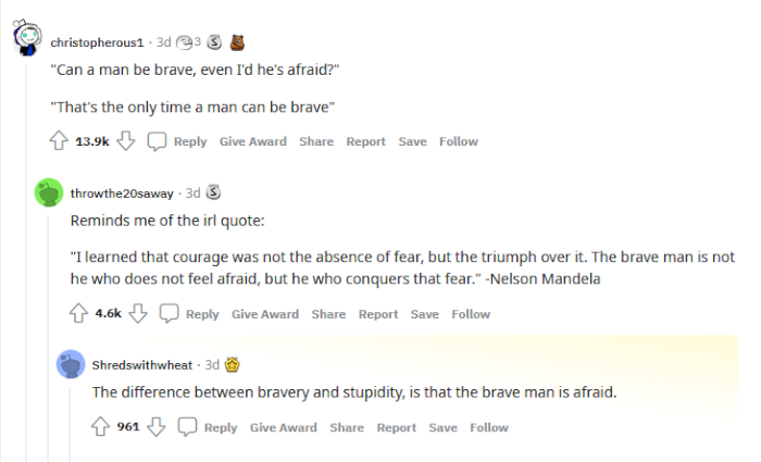 reddit-fictional-quote-resonate-bravery.png